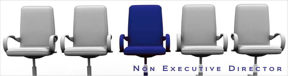 Image result for Non-Executive Director